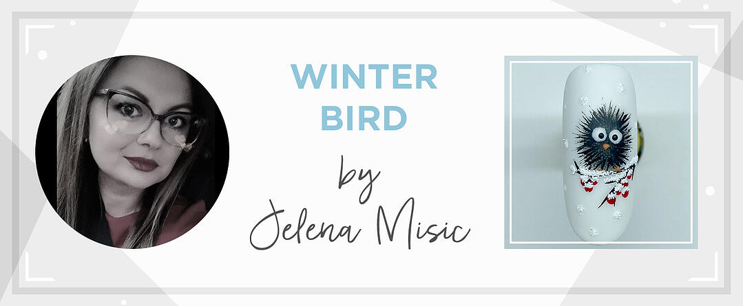 SBS_header_template_1600x660_Winterbird_Jelena-Misic